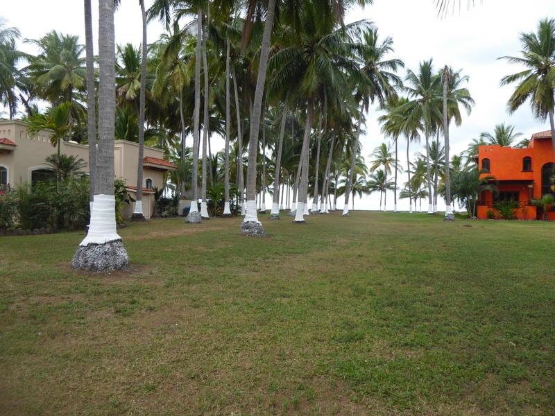 8 Tortugas, Lot Ryan, Riviera Nayarit, Na