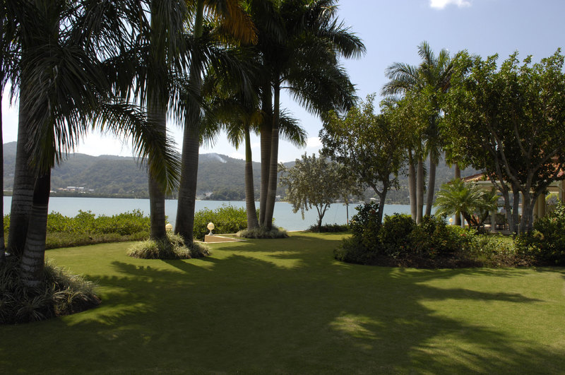 Calypso shores jamaica villas16