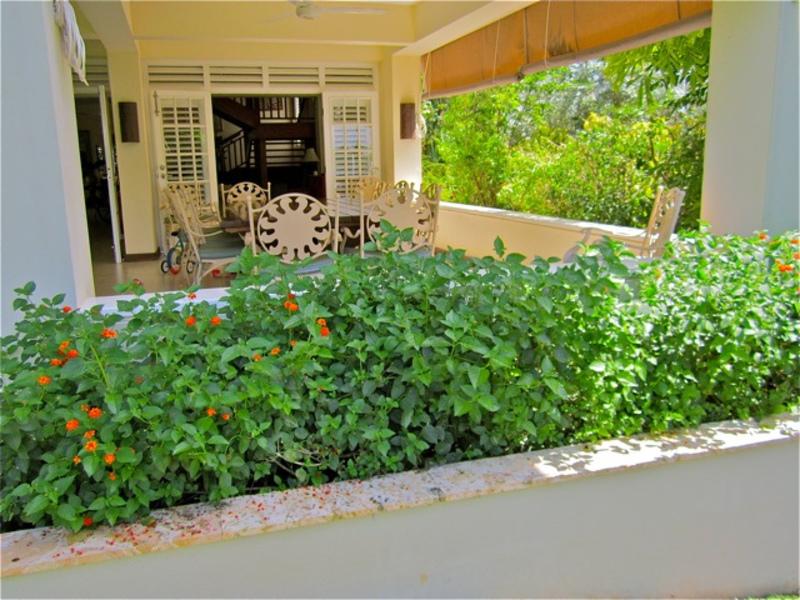 Coral cove jamaica villas17