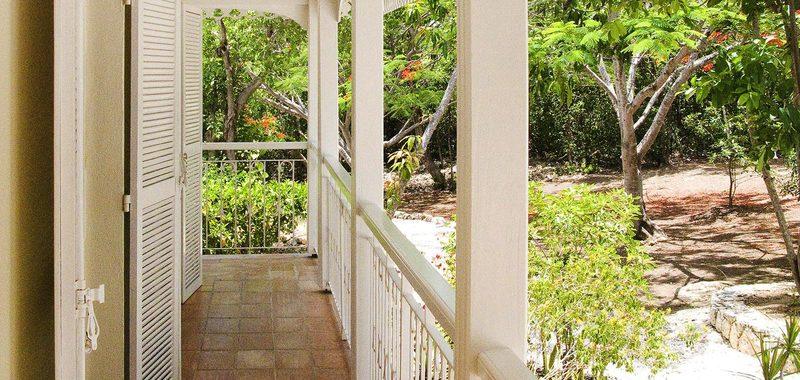 Jardin creole 15