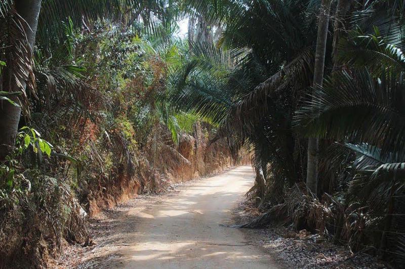 Na Camino Las Clavelinas, Lote Vista Paraiso, Riviera Nayarit, Na