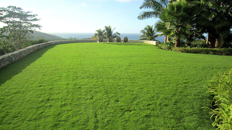 Point of view jamaica villas08
